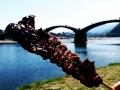 Kintai bridge with skewered meat:錦帯橋と牛串