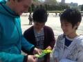 Folding paper cranes:折り紙中