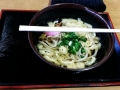 My first sanuki udon!